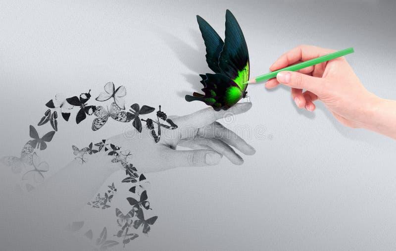 Έννοια έμπνευσης με την όμορφη πεταλούδα στοκ φωτογραφία