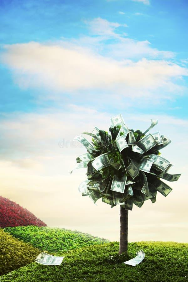 Έννοια, δέντρο χρημάτων στη χλόη στοκ φωτογραφία
