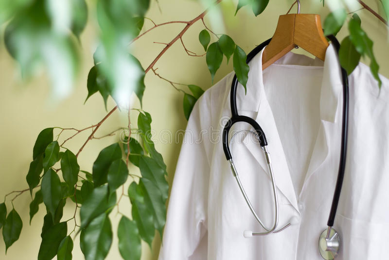 Έννοια εναλλακτικής ιατρικής με το πράσινο παλτό δέντρων και γιατρών στοκ εικόνα