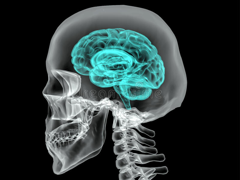 Έννοια ενός ενεργού ανθρώπινου εγκεφάλου σε ένα σκοτεινό διάνυσμα ελεύθερη απεικόνιση δικαιώματος
