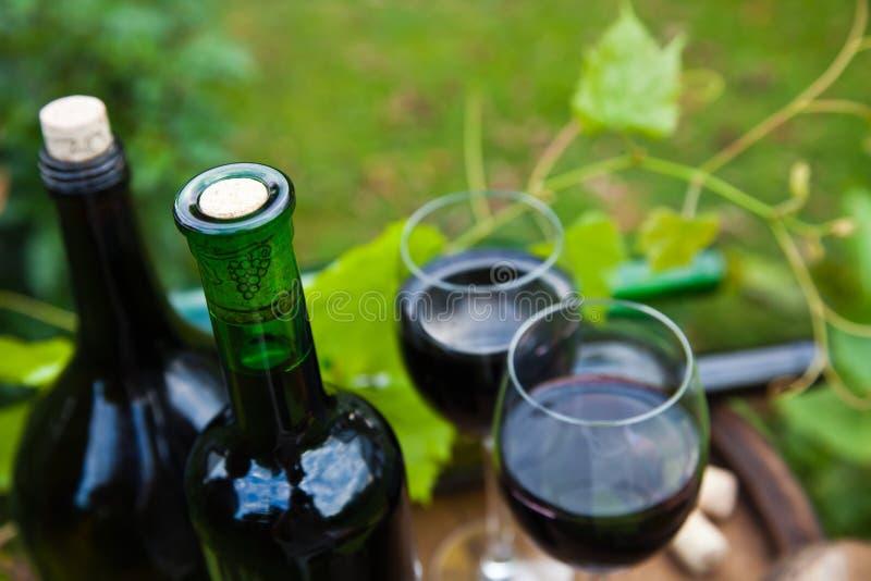 Έννοια κόκκινου κρασιού στοκ φωτογραφία με δικαίωμα ελεύθερης χρήσης