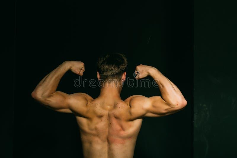 Έννοια μυών Bodybuilder με την ισχυρή πλάτη κορμών μυών Ευκίνητοι δικέφαλοι μυ'ες ατόμων μυών και triceps Άσκηση οικοδόμησης μυών στοκ εικόνα