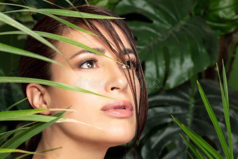 Έννοια ομορφιάς και υγείας με ένα όμορφο πρόσωπο γυναικών που περιβάλλεται από τις πράσινες εγκαταστάσεις στοκ εικόνες