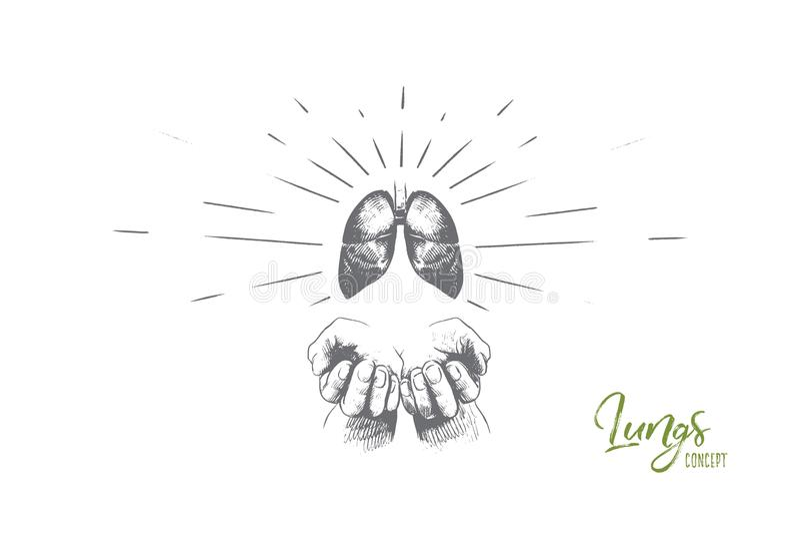 Έννοια πνευμόνων Συρμένο χέρι απομονωμένο διάνυσμα απεικόνιση αποθεμάτων