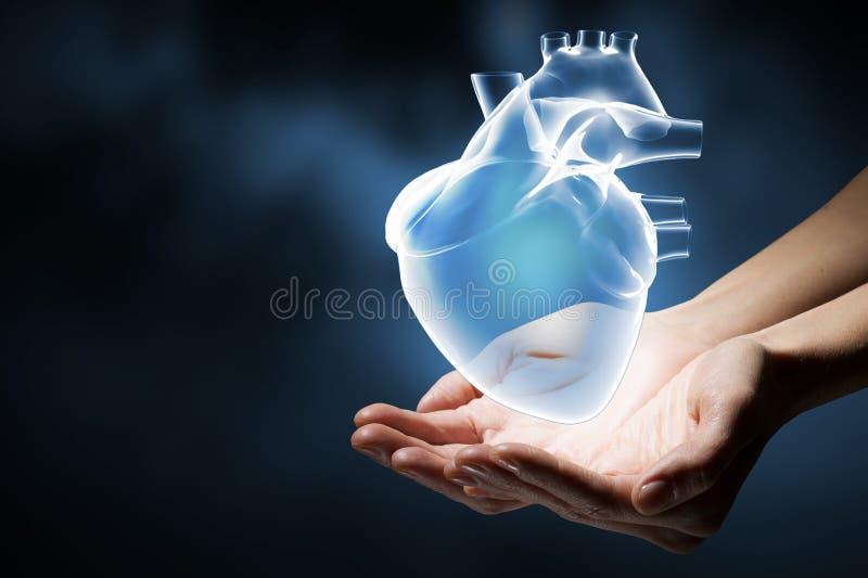 Έννοια προσοχής καρδιών στοκ εικόνες