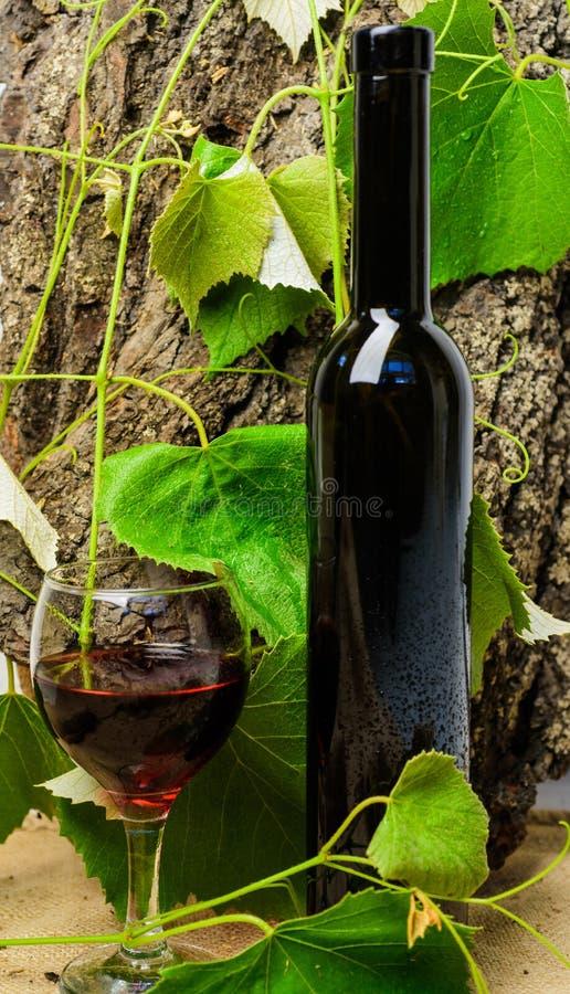 Έννοια τέχνης οινοποιιών Κρασί μπουκαλιών και wineglass φυσικό περιβάλλον Το Sommelier συστήνει υψηλό - ποιοτικό προϊόν φυσικός στοκ φωτογραφία με δικαίωμα ελεύθερης χρήσης