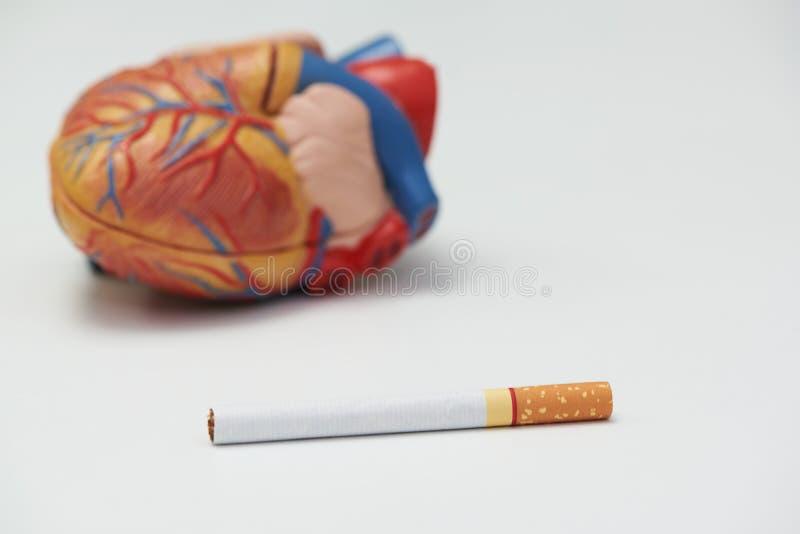 Έννοια της ζημιάς καπνίσματος στην καρδιά στοκ φωτογραφίες με δικαίωμα ελεύθερης χρήσης