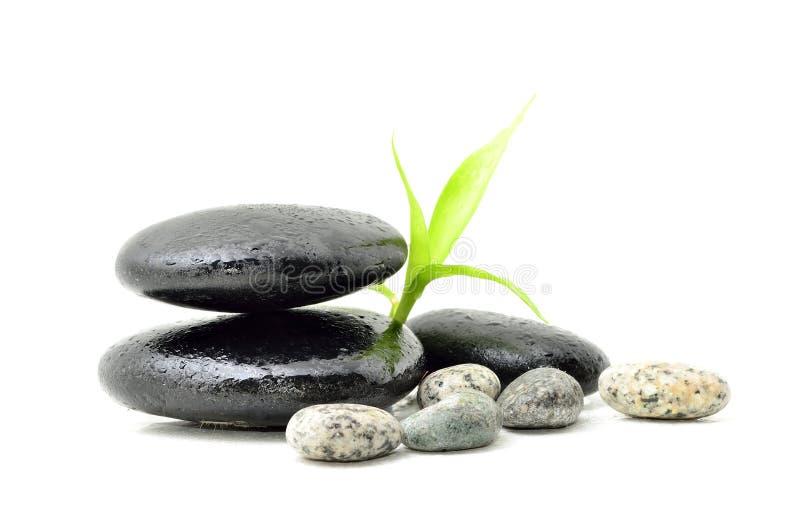 Έννοια SPA zen στοκ εικόνες