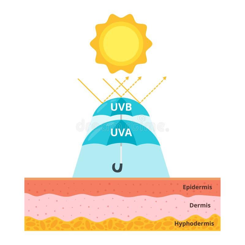 Έννοια Uva και uvb προστασίας διανυσματική απεικόνιση