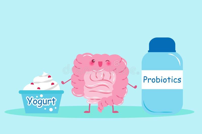 Έντερο με το probiotics ελεύθερη απεικόνιση δικαιώματος