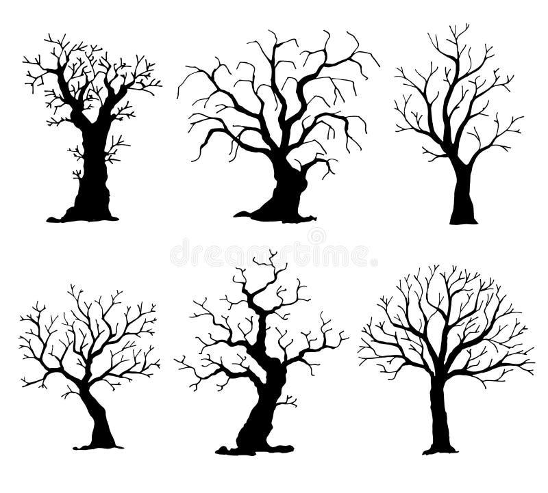 δέντρα σκιαγραφιών συλλογής απομονωμένο ανασκόπηση δ&iota διανυσματική απεικόνιση