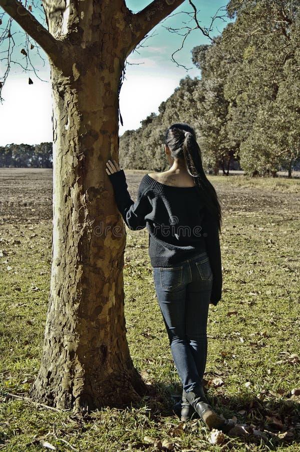 δέντρο κοριτσιών κάτω στοκ φωτογραφίες με δικαίωμα ελεύθερης χρήσης