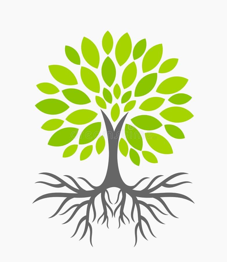 δέντρο ριζών ελεύθερη απεικόνιση δικαιώματος