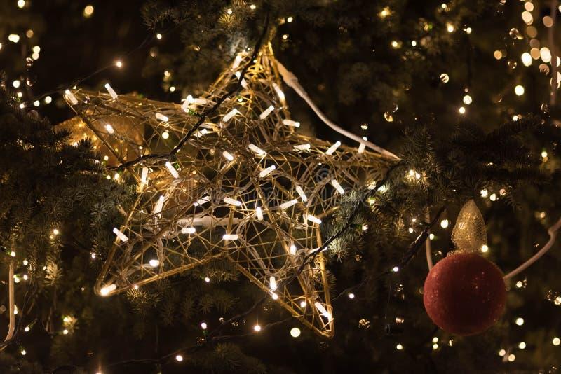 Ένωση διακοσμήσεων αστεριών φωτισμού στο χριστουγεννιάτικο δέντρο στοκ εικόνες με δικαίωμα ελεύθερης χρήσης