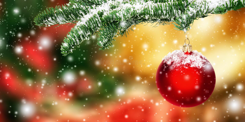 Ένωση του κόκκινου μπιχλιμπιδιού Χριστουγέννων στο χιόνι στοκ φωτογραφία με δικαίωμα ελεύθερης χρήσης