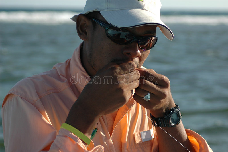 ένωση των honduran δοντιών οδηγών μυγών στοκ φωτογραφία με δικαίωμα ελεύθερης χρήσης