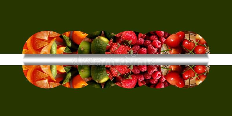Έξι αντανακλημένο semicircles σύνολο των διάφορων fruity συστάσεων ελεύθερη απεικόνιση δικαιώματος