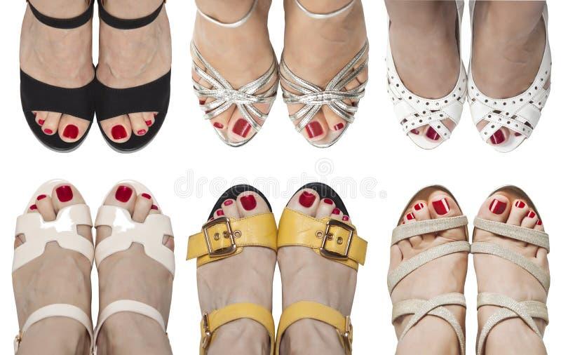Έξι ζευγάρια των ποδιών στα σανδάλια στοκ εικόνες