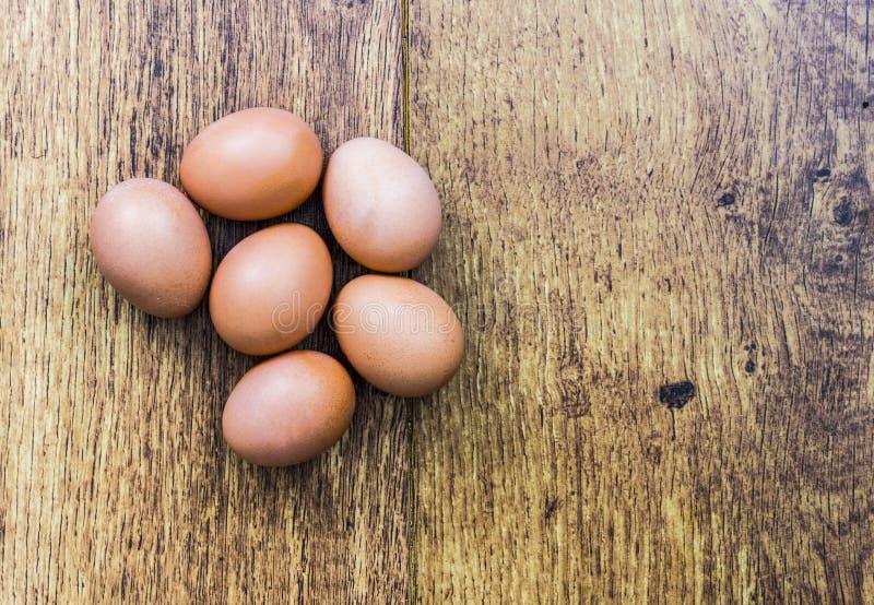 Έξι καφετιά αυγά στοκ εικόνα