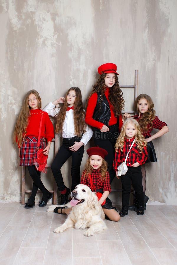 Έξι όμορφα κορίτσια των διαφορετικών ηλικιών, έξι αδελφές θέτουν στο εσωτερικό κατά τη διάρκεια των επισκευών στοκ εικόνες με δικαίωμα ελεύθερης χρήσης