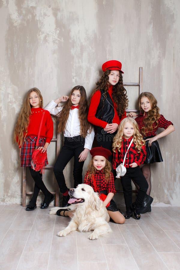 Έξι όμορφα κορίτσια των διαφορετικών ηλικιών, έξι αδελφές θέτουν στο εσωτερικό κατά τη διάρκεια των επισκευών στοκ εικόνες