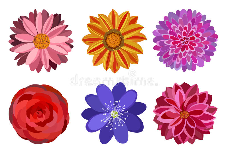 Έξι όμορφα πολυ χρωματισμένα λουλούδια ελεύθερη απεικόνιση δικαιώματος