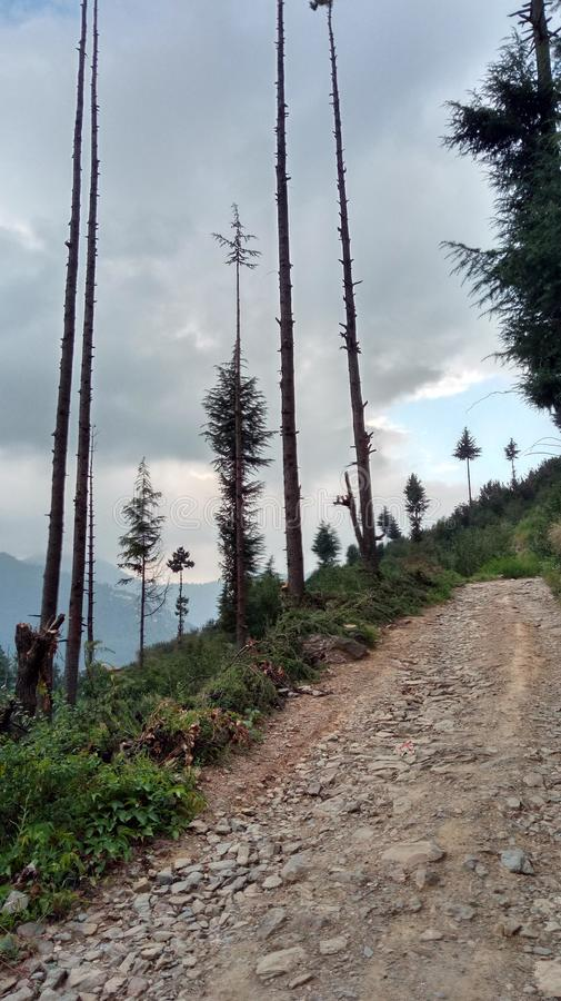 Έξοχοι ζαλίζοντας λόφοι Shimla απόψεων φύσης στοκ φωτογραφίες