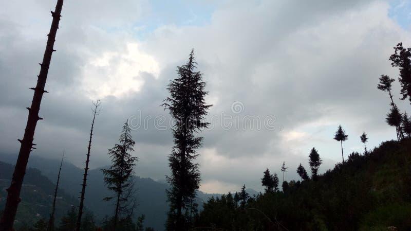 Έξοχοι ζαλίζοντας λόφοι Shimla απόψεων φύσης στοκ φωτογραφίες με δικαίωμα ελεύθερης χρήσης