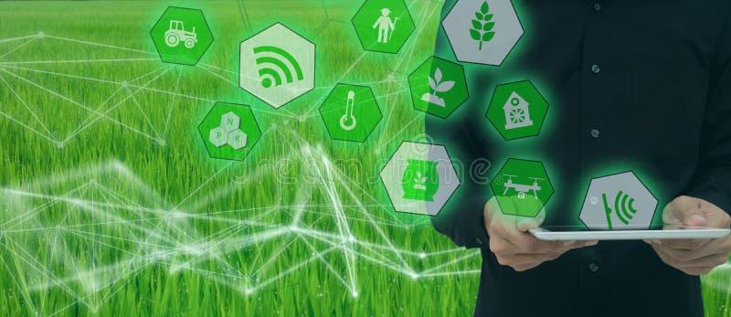 Έξυπνη καλλιέργεια, βιομηχανική έννοια γεωργίας με το τεχνητό intelligenceai Έξυπνο ρομπότ χρήσης της Farmer και αυξημένη πραγματ στοκ εικόνα