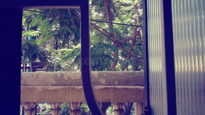 Έξω από το παράθυρο στοκ εικόνες με δικαίωμα ελεύθερης χρήσης