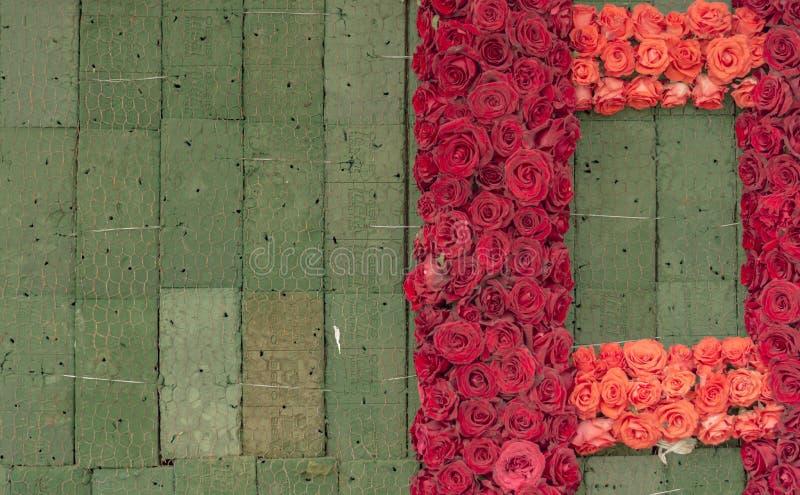 Έργο υπό κατασκευή: Τοίχος των ροδαλών λουλουδιών στο Floral αφρό στοκ φωτογραφία με δικαίωμα ελεύθερης χρήσης
