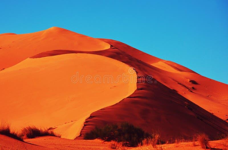 Έρημος άμμου στοκ φωτογραφία