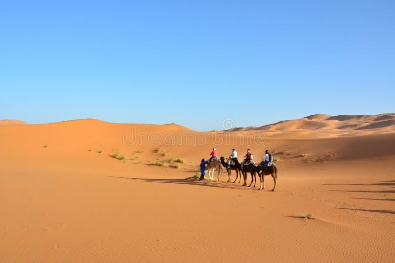 Έρημος, άνθρωποι στις καμήλες, η δυτική Σαχάρα στο Μαρόκο r στοκ φωτογραφία με δικαίωμα ελεύθερης χρήσης