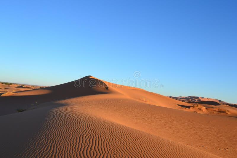 Έρημος για πραγματικό στοκ εικόνες