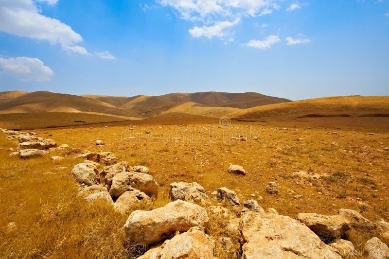 έρημος Ισραήλ στοκ εικόνες με δικαίωμα ελεύθερης χρήσης