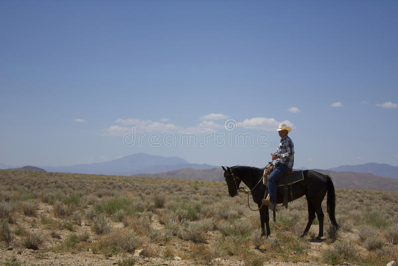 έρημος κάουμποϋ στοκ εικόνες με δικαίωμα ελεύθερης χρήσης