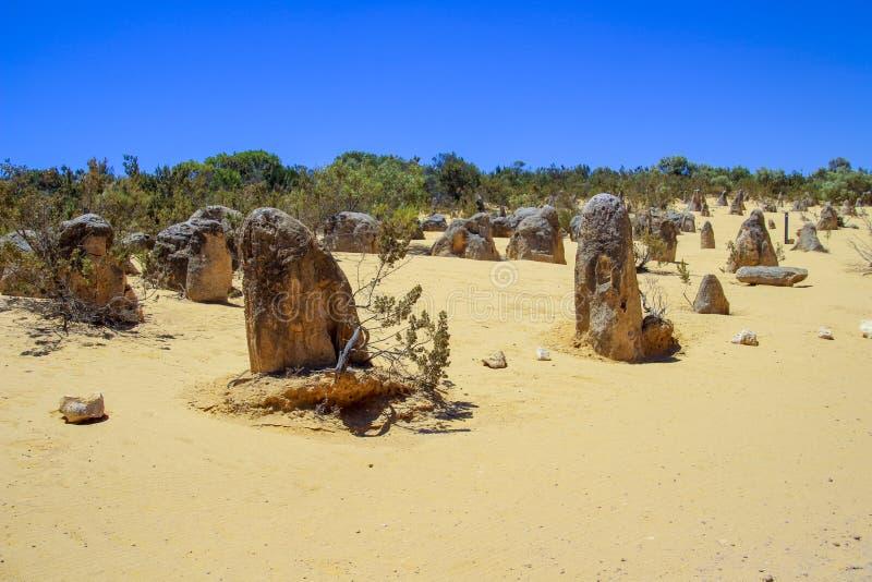 Έρημος και βράχοι με το μπλε ουρανό στοκ εικόνα