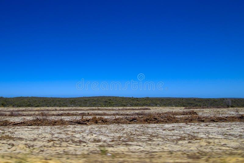 Έρημος και βράχοι με το μπλε ουρανό στοκ εικόνες