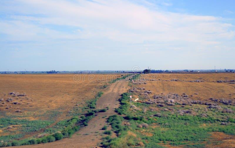 Έρημος Καλιφόρνια οδικών κοιλάδων δέντρων στοκ εικόνα με δικαίωμα ελεύθερης χρήσης