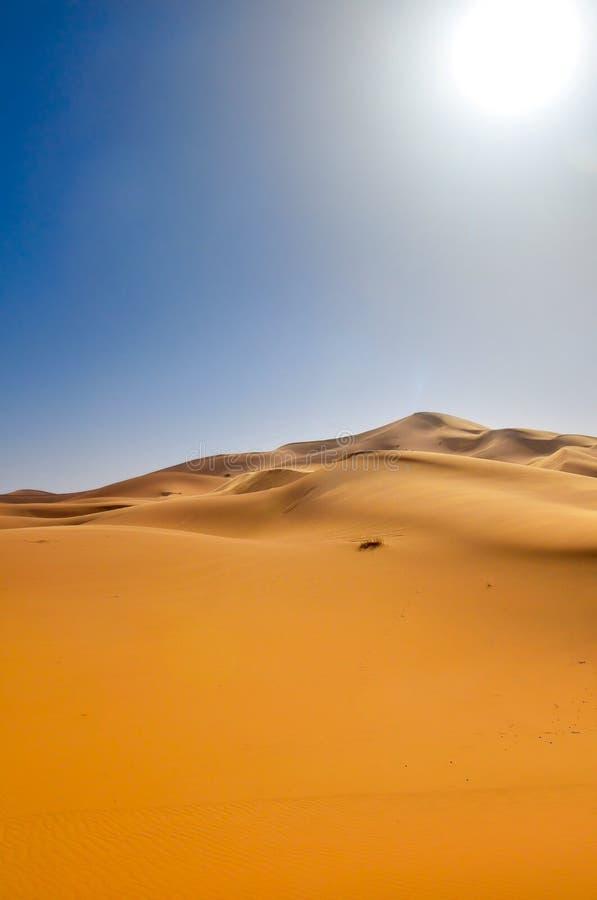 έρημος Σαχάρα Μαρόκο στοκ εικόνες