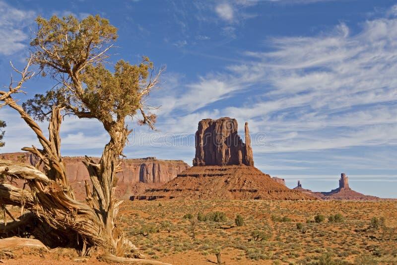Έρημος στην κοιλάδα, την Αριζόνα και τη Γιούτα μνημείων στοκ εικόνα με δικαίωμα ελεύθερης χρήσης