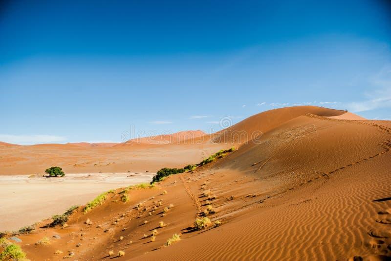Έρημος της Ναμίμπια, Αφρική στοκ φωτογραφίες