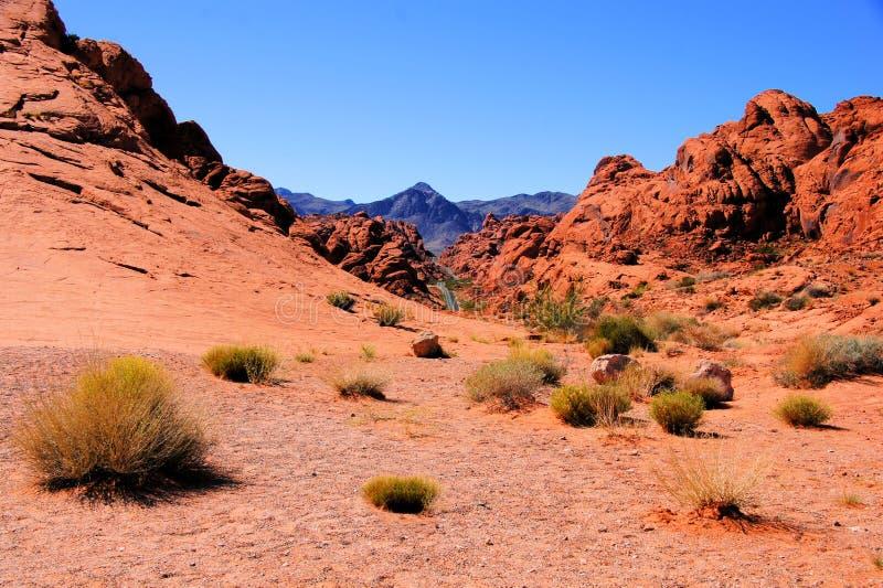 Έρημος της Νεβάδας στοκ φωτογραφία