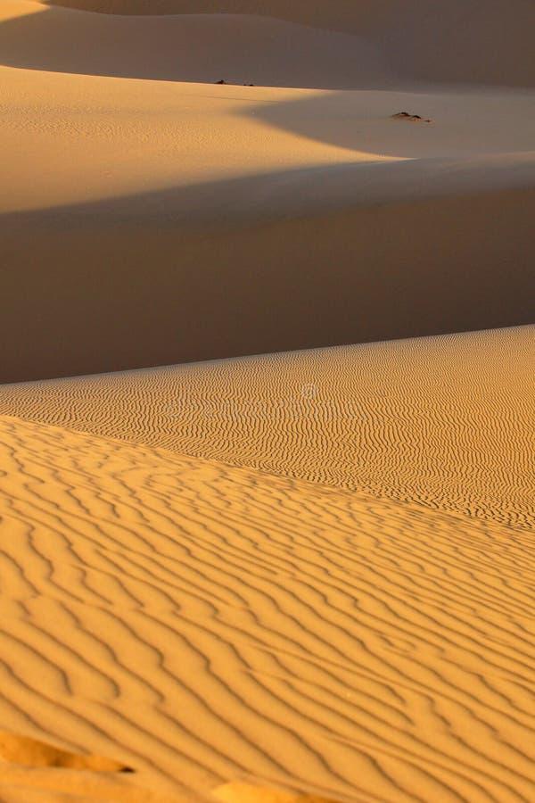 Έρημος στοκ φωτογραφίες με δικαίωμα ελεύθερης χρήσης