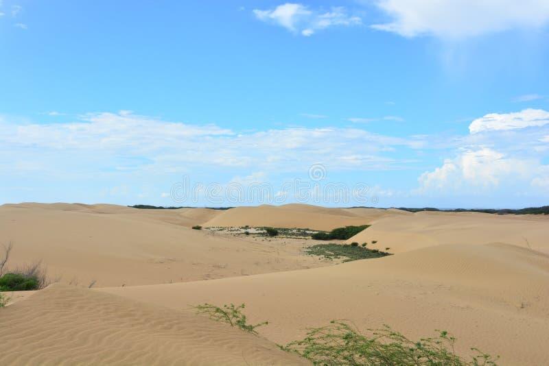 Έρημος Medanos de Coro, Βενεζουέλα στοκ εικόνες
