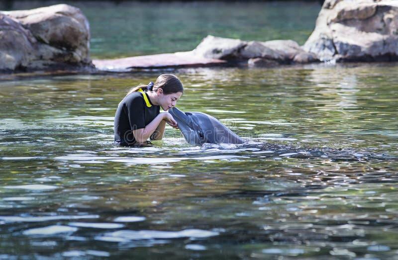 Έφηβη που φιλά ένα δελφίνι σε μια ωκεάνια λιμνοθάλασσα στοκ φωτογραφία με δικαίωμα ελεύθερης χρήσης