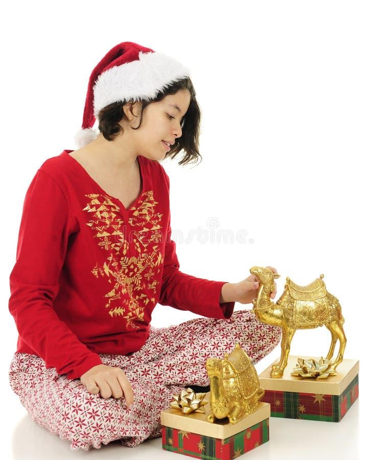 Έφηβος με τις καμήλες Χριστουγέννων στοκ εικόνες με δικαίωμα ελεύθερης χρήσης