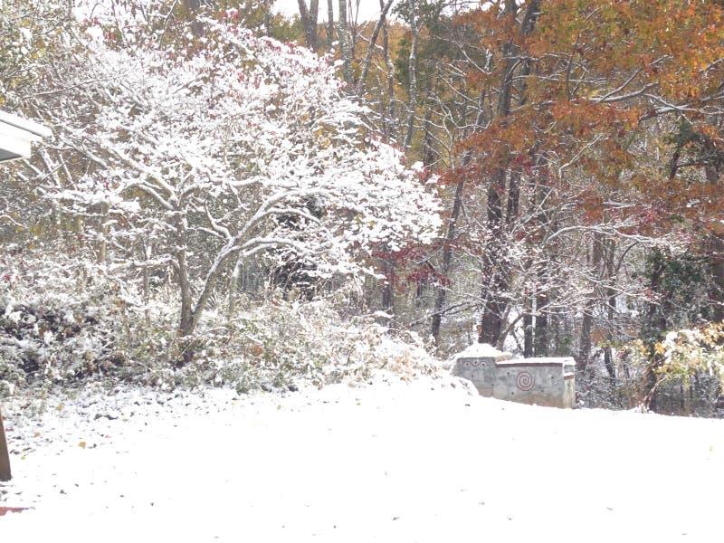 Έχω ονειρευτεί άσπρα Χριστούγεννα στοκ εικόνα
