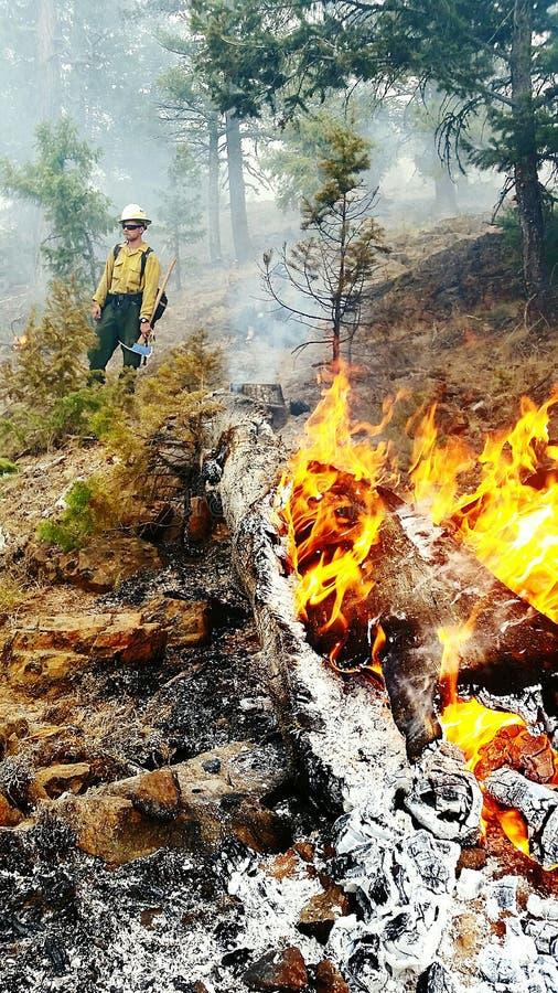 Έλεγχος της πυρκαγιάς στοκ εικόνες