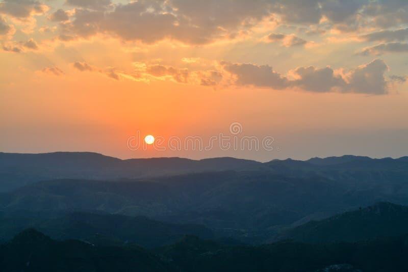 Ήλιος και δάσος στοκ φωτογραφίες με δικαίωμα ελεύθερης χρήσης